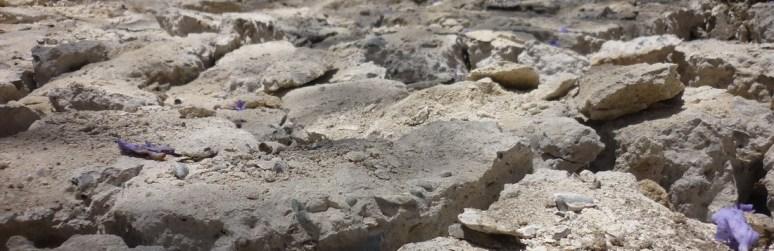 02-escombros-bienal-venecia-alberto-reina