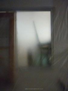 elogio-sombra-alberto-reina
