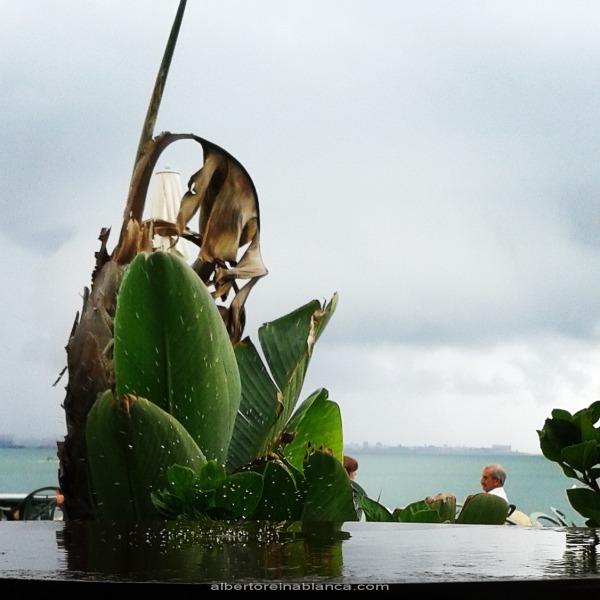 14/06/2015 Últimas lluvias en la Bahía de Cádiz