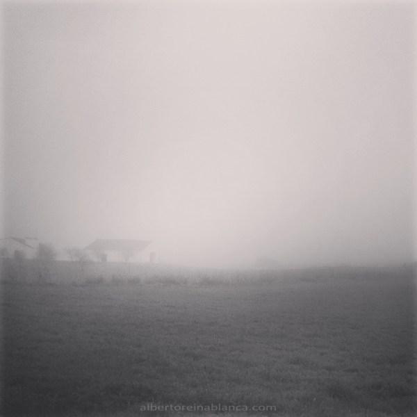 La niebla. Villafranca de los Barros (Badajoz) 2016-01-27