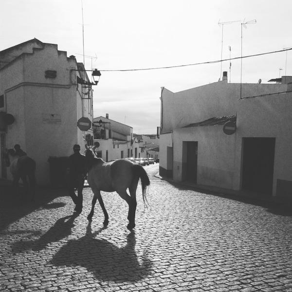 Villafranca de los barros (badajoz) 2016-03-08