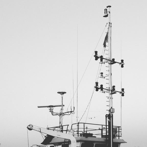Draga. El Puerto de santa maría (cádiz) 2016-08-18