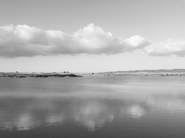 Lago de Arcos de la Frontera (cádiz) 2016-12-10